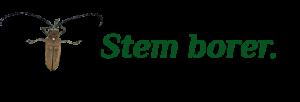 2 - stem borer