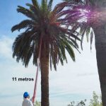 Pértiga-de-11-metros-de-largo