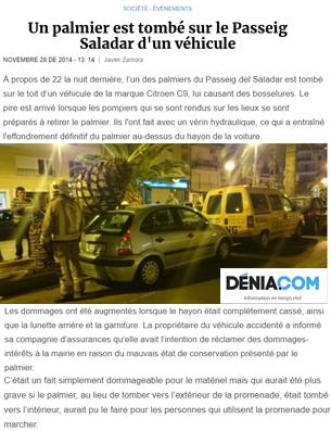 Un-palmier-est-tombé-sur-le-Passeig-Saladar-d'un-véhicule